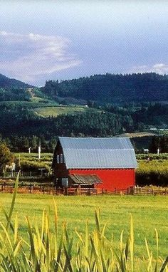 Red Barn Metal Roof To Reflect Sun