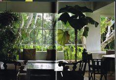 CCF20120322_0007 Condominium, Aquarium, Plants, Home, Goldfish Bowl, Aquarium Fish Tank, Ad Home, Plant, Homes