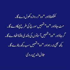 Qasim Ali Shah Urdu Quote | Inspirational words, Touching ...