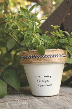 Here Today Tarragon Tomorrow by PlantPuns on Etsy