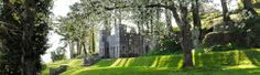 Home page - Shaldon Village Devon, Tourism, Plants, Turismo, Plant, Travel, Planets, Traveling