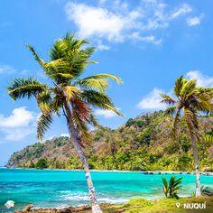 Nuquí. Chocó,Colombia. Destino con un encanto inigualable. La mejor época para visitarla es entre junio y octubre cuando las ballenas jorobadas pasan por las costas del Pacífico colombiano.