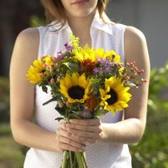 When to Plant Dwarf Sunflowers Outside | Home Guides | SF Gate