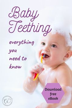 This guide on teething for babies contains hacks & tips for parents looking for remedies to maintain the best care for their baby and toddler's teeth. As milk teeth emerge, brushing baby teeth and maintaining dental hygiene is very important. This ebook also contains detailed information on toddler teeth brushing and useful hacks and remedies to get them into the regular habit and avoid tooth decay. #babyteething #Toddlerteething #babybrushing #toddlerbrushing #teethinghacks Newborn Baby Tips, Newborn Care, Toddler Teeth Brushing, Teething Babies, Baby On A Budget, Pregnancy Advice, Breastfeeding And Pumping, Baby Necessities, Baby Massage