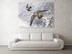 Pair Of Peregrine Falcons In Flight Canvas Print / Canvas Art by Alan M Hunt Wildlife Paintings, Wildlife Art, Acrylic Canvas, Canvas Art, Peregrine Falcon, Animal Habitats, Photorealism, Raptors, Falcons