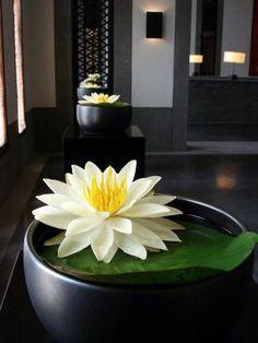 花艺 Centerpiece Decorations, Floral Centerpieces, Floral Arrangements, Asian Flowers, Japanese Flowers, Ikebana, Bonsai, Indoor Water Garden, Arte Floral