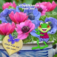 Afbeelding Birthday Wishes, Happy Birthday, Get Well Wishes, Marjolein Bastin, Get Well Soon, Godly Woman, Party, Fun, Printables