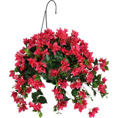 House of Silk Flowers Artificial Bougainvillea Hanging Plant in Basket (€60) ❤ liked on Polyvore featuring home, home decor, floral decor, faux flowers, faux floral arrangement, faux florals, fake bouquets and artificial silk flowers