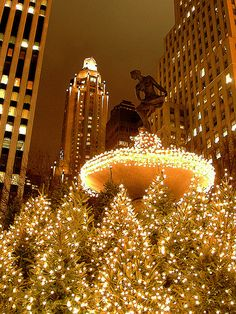 The Pulitzer Fountain in Grand Army Plaza Central Park, decorated for Christmas. NEW YORK CITY.   (by Jim in Times Square, via Flickr)