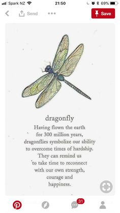 Dragonfly Meaning, Dragonfly Quotes, Calligraphy Letters, Sweet Words, Spirit Animal, Great Quotes, Bible Verses, Meant To Be, Prayers