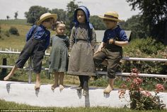 Four Amish children perch on a fence on a hot summer's day in Pennsylvania in 1941.  photo Howell Walker, National Geographic Society