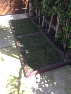 Indoor Dog Potty and Dog Potty Grass delivery for dog litter boxes and the dog potty patch in Los Angeles and Orange County Indoor Dog Area, Indoor Dog Potty, Indoor Pets, Patio Balcony Ideas, Cute Fluffy Puppies, Really Big Dogs, Dog Litter Box, Dog Yard, Diy Crafts To Do