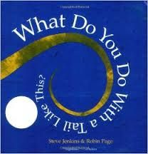 What Do You Do With a Tail Like This? by Steve Jenkins book jacket