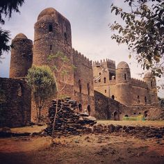There be castles in Ethiopia. This 17th c. one: Fasiladas' Palace in Gondar. I'm fast realizing I knew little of the depth of this country's history.