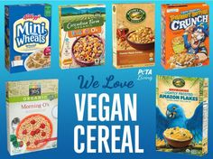 Not only will these vegan cereal options give you energy to conquer your day, they're also delicious enough to make you a morning person.
