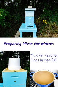 Learn what I am doing to prepare my bees for winter - with tips and tricks for feeding the bees Feeding Bees, Beekeeping, Honey, Learning, Winter, Tips, Blog, Winter Time, Studying