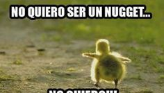 Corre Fores corre!!!