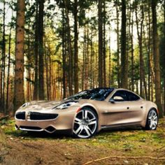 I spy .. A Fisker Karma in the woods!