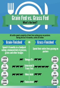 What's the difference between grain-finished & grass-finished beef? This graphic doesn't show the length of time it takes to finish grass-fed beef (if you can truly ever call them finished) as compared to grain-fed beef