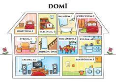 Domī -------- Nombres de las habitaciones de la casa en latín.