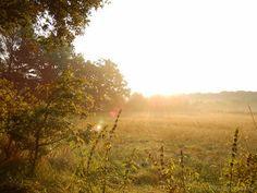 Morning, Schinveld, Netherlands