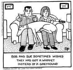 Greyhound comic