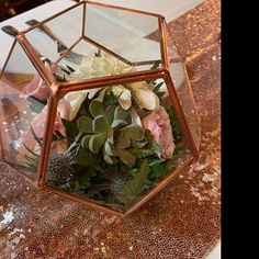 Pentagon Glass-less Terrarium/Terrarium Frame/Glass Geometric Terrarium/ Wedding Decor/ Terrarium Kit/ Terrarium Gift/ Terrarium Centerpiece Kit Terrarium, Terrarium Centerpiece, Terrarium Wedding, Terrariums, Water Centerpieces, Branch Centerpieces, Vasos Vintage, Ostrich Feather Centerpieces, Cardboard Box