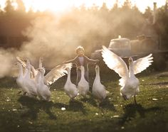 Mother Takes Magical Photos of Her Kids With Animals on Her Farm Animals For Kids, Farm Animals, Cute Animals, Children Photography, Animal Photography, Foto Art, Tier Fotos, Jolie Photo, Farm Life