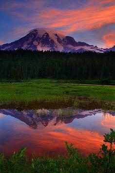 "coiour-my-world: "" Sunrise Mt Rainier Reflected in Reflection Lakes From Mt Rainier National Park Washington Photo ~ Randall Hodges """