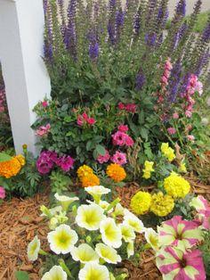 Teresa's 2012 Mailbox Flowers