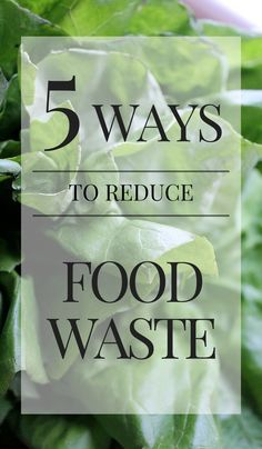 5 Ways to Reduce Food Waste- Small changes to make a big impact | www.asaucykitchen.com @sarahro20