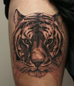 Tiger Head Tattoo On Thigh by Anders Grucz