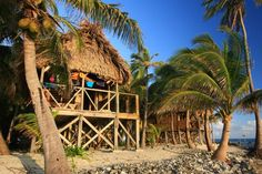Cabana, Long Caye at Glover's Reef in Belize