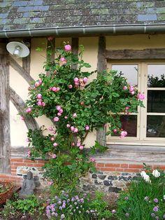 Chaumiere normande demeures de charme normandie for Restauration maison normande