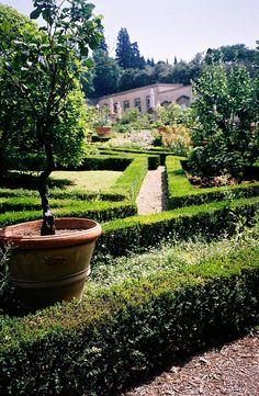 Villa Medici at Castello (Villa Reale)   GardenVisit.com, the garden landscape guide