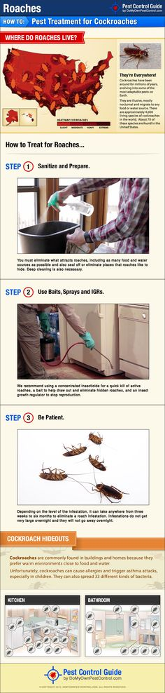 Roach treatment guide showing how to get rid of roaches on your own, without hiring an exterminator.