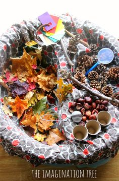 Autumn sensory and discovery table A simple divided plate would work for this and it could be placed in the toy area