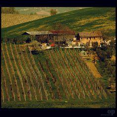 Family Farming - Rural House | Osvaldo_Zoom