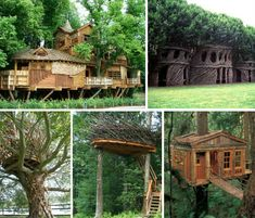 20 incredible tree houses, including multi-story structures, elevated cabins and fairy houses made of living saplings. Cool Tree Houses, Fairy Houses, House In Nature, Nature Houses, Organic Structure, Natural Homes, Unusual Homes, Forest House, Built Environment
