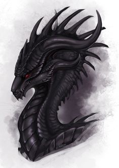 Obsidian Wyvern by Adalfyre on DeviantArt