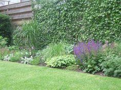 Afbeeldingsresultaat voor voorbeeldtuin met lage planten