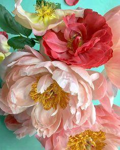 Beautiful Flower Arrangements, Floral Arrangements, Amazing Flowers, Beautiful Flowers, Language Of Flowers, Flower Market, Botanical Illustration, Peonies, Planting Flowers