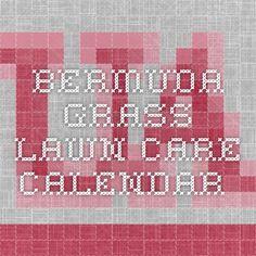 Bermuda Grass Lawn Care Calendar Care Calendar, Grass Weeds, Tavern On The Green, Bermuda Grass, Lawn Care Tips, Garden Maintenance, Weed Control, Organic Gardening, Plants
