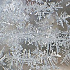 Frost On The Windows - Joy Nichols Artwork And Photography