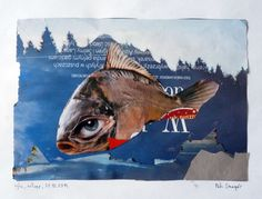 fish, collage A4, 31.12.2014 Wrocław, more on my website http://smogor.tv/node/642