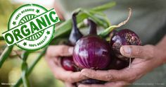 Onions add amazing zest to nearly any type of meal, but the nutritional value the red variety contains is far more dramatic. http://articles.mercola.com/sites/articles/archive/2017/06/26/organic-red-onions.aspx?utm_source=dnl&utm_medium=email&utm_content=art2&utm_campaign=20170626Z1_UCM&et_cid=DM148782&et_rid=2058132539