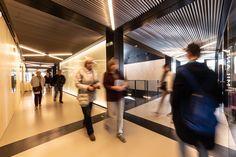 Architecture Days 2018 in Vizovice Expo 2015, Tour Guide, Pavilion, Italy, Architecture, Building, Messages, Arquitetura, Italia