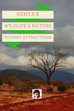 Are you into nature? Check out these amazing tourist attractions in Kenya!