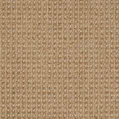 STAINMASTER Trusoft Rising Star Beach Drive Fashion Forward Indoor Carpet