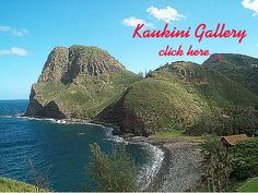 Kaukini Gallery, Maui.  Just getting there is an adventure to remember.